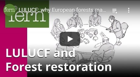2017-05-22-biomassmurder-org-lulucf-why-european-forests-matter-for-the-climate-fern-english