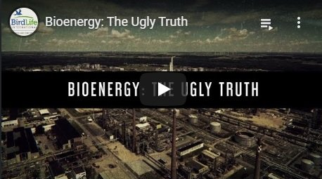 2017-12-14-biomassmurder-org-bioenergy-the-ugly-truth-birdlife-europe-and-central-asia-english