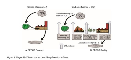 2019-02-10-easac-forest-bioenergy-carbon-capture-and-storage-and-carbon-dioxide-removal