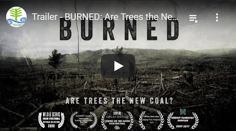 2019-03-17-biomassmurder-org-burned-are-trees-the-new-coal-global-forest-coalition-english