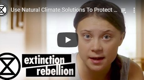 2019-04-00-natural-climate-solutions-averting-climate-breakdown-by-restoring-ecosystems-english