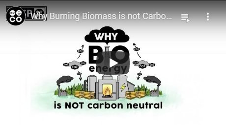 2019-09-05-biomassmurder-org-why-burning-biomass-is-not-climate-neatral-edsp-eco-english