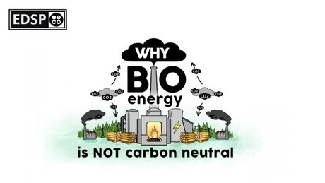 2019-11-22-edsp-eco-pro-biomass-lobbyfacts-research-part-3-scientists-why-burning-woody-biomass-for-energy-is-not-carbon-neutral